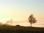 Nebel ueber der Zschopau